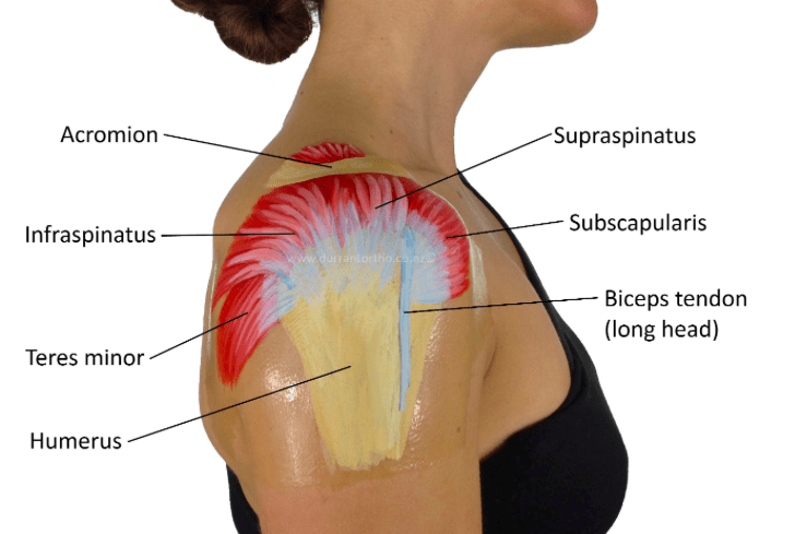 Neck & Shoulder Pain Treatment in Damansara Heights, KL Malaysia